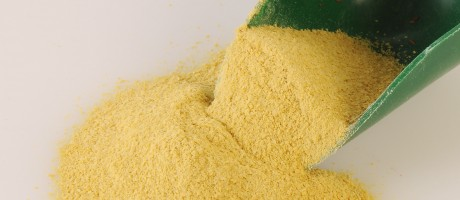 Three Brands of Nutritional Yeast Contain Detectable Lead Levels But the Risk is Minimal