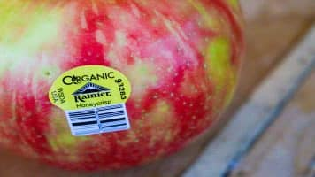 What Are the Benefits of Organic?